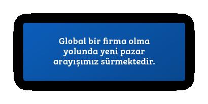 Global bir firma olma yolunda yeni pazar arayışımız sürmektedir.